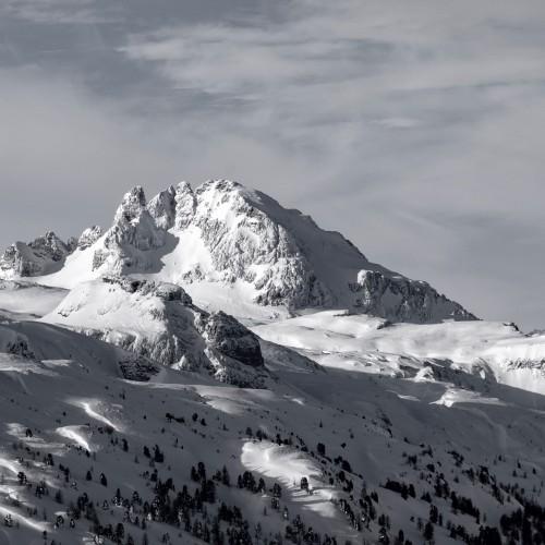 Winter Scenery (Monochrome)